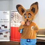 Auditorix ist der Löffelhund (© Uwe Völkner)
